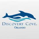 Discovery Cove Day Resort - 1 Dia - Com Nado (6 anos ou mais)